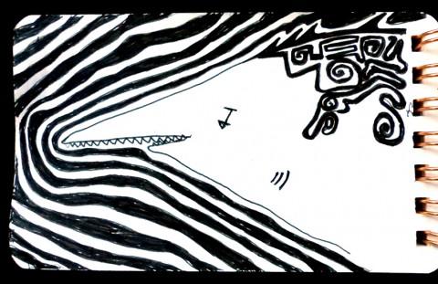 Requin tatoué