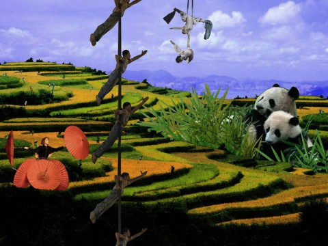 aux couleurs de l'Asie image de fond